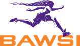 logo for Bay Area Women's Sports Initiative
